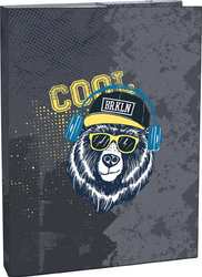 Box na sešity A4 Cool bear
